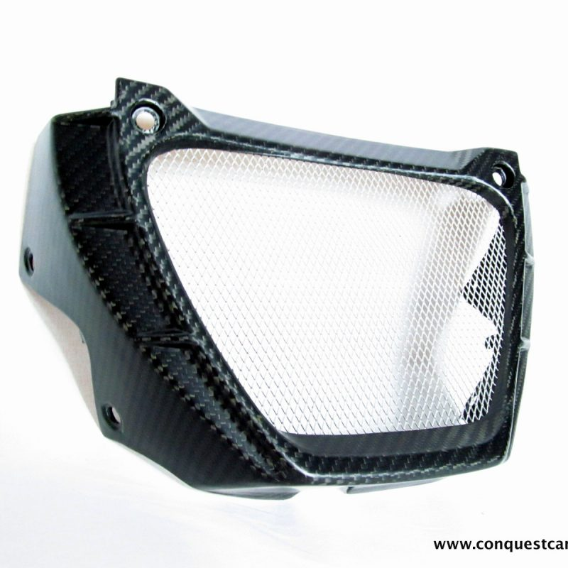 Aprilia Tuono V4 Carbon Fibre Oil Cooler Guard