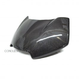 Triumph Speed Triple Carbon Fibre Fly Screen Gloss 2016+